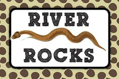 "Critter Birthday Party Snack Bar Sign - Used candy rocks as the ""River Rocks"""