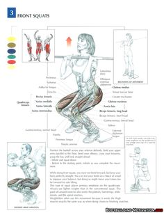 #Training #Anatomy, #Workout #crossfit #wod #fit #weightloss #lifting #squat #crossfittraining https://www.facebook.com/pages/Addicted-2-Crossfit/812904752082874