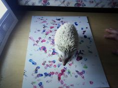While looking for hedgehog art for my daughter, I came across this.  Too funny and too cute!  (read the description of the art).