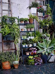 Pour fleurir son balcon avec une touche déco, échelle métallisée pour une dizaine de pots de fleurs à poser sur mur du balcon, jardinières suspendues SALLADSKÅL piédestal extérieur 49 € jardinière avec support intérieur/extérieur 14,95 € plusieurs coloris SOCKER Ikea.