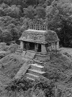 Google Arts&Culture incluye contenido de más de 2,000 museos y archivos importantes que se asociaron con GoogleCulturalInstitute para mostrar en línea los tesoros del mundo. Latin America, South America, Spooky Places, Belize Travel, Tikal, Sculpture Clay, Civilization, Maya, Abandoned