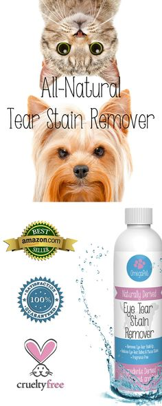 All-Natural Tear Stain Remover for Dogs and Cats | Quickly cleanses tear stains from the fur around your puppy's  eyes, leaving them clean and happy. Fragrance-free. Palm-oil and coconut-oil based solution is safe for even the most sensitive pets. Works great on light colored dogs including Maltese, Yorkies, Shih Tzus, Bichon Frise, Poodles, and Cocker Spaniels. Explore our pet grooming  products and animal supplies at http://www.amazon.com/Tear-Stain-Remover-Dogs-Naturally/dp/B00SNLY50E/