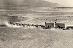 20 Real Pictures Of The Old West That You've Never Seen Before · Page 3 of 21 · Reinventing Aging Rare Images, Rare Photos, Old Photos, Amazing Real Pictures, Into The West, Oregon Trail, Rule Of Thirds, Le Far West, Death Valley