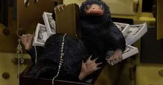 Fantastic Beasts Clip Introduces the Money Hungry Niffler -- A second Emoji Magic spell has unlocked a new Fantastic Beasts clip, featuring one of the new creatures from the Harry Potter universe. -- http://movieweb.com/fantastic-beasts-movie-niffler-clip/