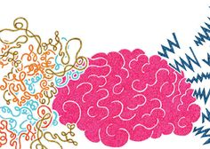 """How Mindfulness Changes the Brain - """"The structure of the brain can change in 1.5 hours of practice,"""" renowned neuroscientist Richie Davidson said at the Train Your Brain webcast in New York City in the fall. """"Really short amounts can make a difference."""" #mindfulness"""