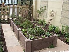 Raised beds. Great for a vegetable patch. The perfect height for bad backs and learning children.