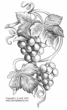 Pyrography Patterns for Beginners | Free Pyrography Patterns | Grapes Patterns Pattern Package More