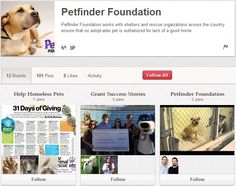 Petfinder Foundation Non Profit, Organizations, It Works, Believe, Adoption, Foundation, Success, Ads, Activities