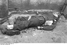 Post with 0 votes and 9530 views. Dead British soldier from the raid on St. British Commandos, Military Honors, Man Of War, British Soldier, War Photography, Second World, World War Two, Wwii, France