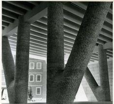 Centro de Investigaciones Biológicas de los Patronatos Cajal y Ferrán del C.S.I.C (Madrid, 1951). Miguel Fisac.