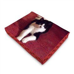 Matelas pour chat à personnaliser sur www.ideecadeauphoto.com