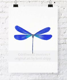 Dragonfly In Cobalt 11x14 Watercolor Print - Cabinet Of Curiosities Dragonfly…