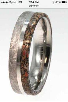 Meteorite, dinosaur fossil, titanium ring. Coolest ring I think I've ever seen!