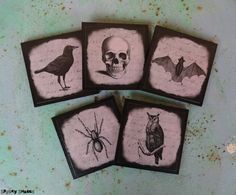 Halloween Curiosities coasters  set of five 5  by Spooky Shades #SpookyShades #gothic