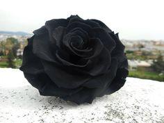 🖤 Black Beauty 🖤 Infinity Roses 🖤  #foreverroses #preservedroses #infinityroses #rose #roseslover #loveroses #blackrose #blackbeauty #lastsforever #flowershots #flowers #flowerlovers #black #uniquebeauty #uniquecolor #inspiration #lovethiscolor #lovetocreate #fantasy #letyourimaginationrunwild #readytocreate #creativity #floristshop #thessaloniki #greece #anthos_theartofflowers Forever Rose, Preserved Roses, Thessaloniki, Unique Colors, Black Beauty, Flower Art, Infinity, Greece, Creativity