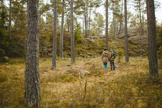 Aneta & Marcin    Sweden destination photography    Malmsjon Lake #sweden #photography #stockholm #destinationphotography #malmsjonlake #lake #misterious #forest