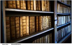 Billions of records online at Ancestry.com.  And, additional details about your family waiting to be discovered in libraries around the world. Happy Library Week!  #genealogy