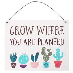 You will love our new item!  http://www.blueponystyle.com/products/boho-bandit-grow-where-you-are-planted-metal-sign?utm_campaign=social_autopilot&utm_source=pin&utm_medium=pin   Shop Now!  #etsymntt #EtsySocial #ESLiving #ebay #toys #EpicOnEtsy #etsyretwt #gift #xmas