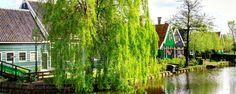 Vakantiehuizen in Nederland zijn er in overvloed. Ontdek samen met je vrienden of familie de schoonheid en diversiteit van ons eigen Nederland. Ontdek het! Verrassend andere reizen