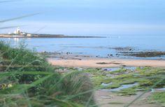 Coquet Island view from Hauxley beach