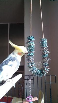 Easy Parrot's Toy From Recycled Puzzle Pieces Diy Parrot Toys, Diy Bird Toys, Diy Budgie Toys, Pet Bird Cage, Bird Cages, Homemade Bird Toys, Cockatiel Care, Parakeet Toys, Bird Aviary