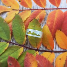 The trees in the mountains are so vivid right now! Wouldn't this ring be the best addition to your autumn adventures? Now available in my shop!