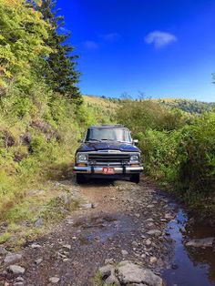 Wagoneer country. http://www.chadsparks.net/2015/09/quick-trip-to-flower-gap.html