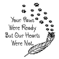This item is unavailable Plotten Digi-tizers Paws Feather (SVG Studio JPG) We also make shirts, v Dog Poems, Dog Quotes, Animal Quotes, Tattoos Skull, Dog Tattoos, Body Art Tattoos, Miss My Dog, Pet Loss Grief, Dog Memorial Tattoos