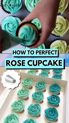 Cupcake Decorating Tips, Cake Decorating Frosting, Cake Decorating Designs, Cake Decorating For Beginners, Cake Designs, Cookie Decorating, Decorating Ideas, Cupcake Icing Designs, Flower Cupcake Cake