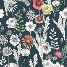 samanthaprintdesign *NEW PRINT* 3 colourways. Botanical Meadow Artwork available to buy textilefederation. Contact me for more info. #textilefederation #textiledesigner #textiles #surfacedesign #printdesign #printspiration #designinspiration #botanical #flower #floral #art #artwork #forsale #handdrawn #sketch #design #surfacespatterns