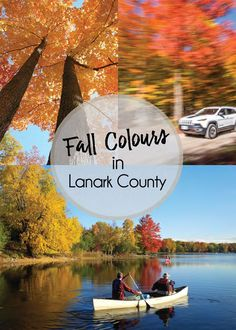 Set on the beautiful Rideau Canal, the concentration of Sugar Maple Trees in Lanark County create one of the most dramatic displays of fall colours in the world. Picnic Spot, Picnic In The Park, Canoe Club, Riverside Park, Autumn Display, Seven Wonders, In The Tree, Ontario, Tourism