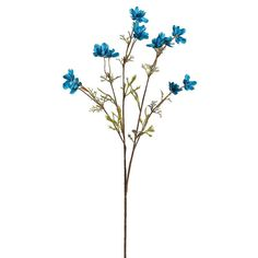 """Baby Silk Cosmos Spray in Turquoise<br>1.5"""" Blooms x 26"""" Tall"""