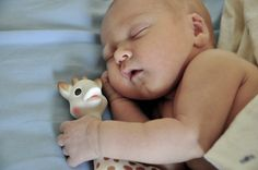 Baby sleeping with Sophie the Giraffe