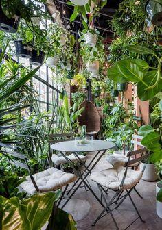 Room With Plants, House Plants Decor, Plant Decor, Plant Rooms, Dream Garden, Home And Garden, Garden Shop, Garden Cafe, Plantas Indoor