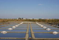 Séchage du sel dans les marais   Flickr - Photo Sharing!