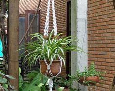 Macrame plant hanger in Simplex series Model E