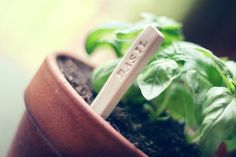 Make your own clay garden markers with a clay containing recycled plastic. Completely customizable and reusable.