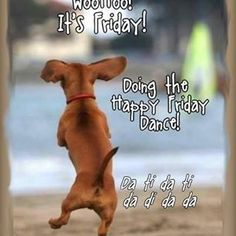 TGIF!!!! Yayyy Friday I only have half a day today!!! Love all of you guys your amazing!!!