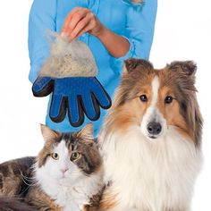Lots of pets scurry at the sight of a brush, or you forgot to groom them until your house and clothing are covered in hair! With the True Touch Pet Deshedding Glove, however, you can pet your furry pa