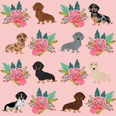 doxie florals floral wreath cute dog design dachshunds doxie fabric cute dogs fabric pink fabric by petfriendly on Spoonflower - custom fabric