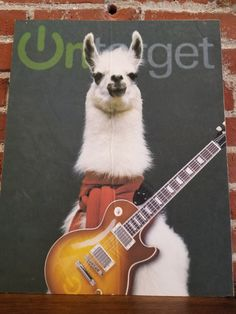 Sheep, Wolves, and Llamas. We're Llamas. Creating branded content to tell your story is what we do. Protective, Honest, and oh-so cute. Online Marketing, Digital Marketing, Competitor Analysis, Llamas, Spirit Animal, Helping Others, Wolves, Sheep, This Is Us