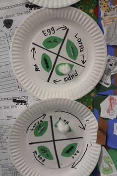 The Razzle Dazzle Classroom: Science and Writing FUN! {Habitats, Life Cycles, Structures & Functions} Ants, Ants, Ants!!!