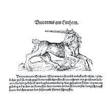 Unicorno - Wikipedia