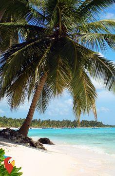 Dom. Republik zum Piratenpreis #travel #dominicanrepublic #awesome #cheaptravel