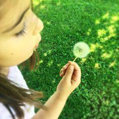 Bu çiçeklerden varsa bir bahçede çocukları nasıl oyalarım diye düşünmeye gerek kalmıyor çünkü bu üflenen çiçek tüm yükü üzerinizden alıyor ��Keyifli günler, hayırlı ramazanlar herkese �� #çocuklar #bahçe #çiçekler #üfleyipeğleniyoruz #bahçedebirtanekalmıştı #doğa #doğaleğlence #anneler #objektifimden #aniyakala #renkler #ela #nature #naturelovers #colours #funtime #picoftheday #coloursofcity #happy #kids #mothers #photooftheday http://turkrazzi.com/ipost/1524680576556420416/?code=BUowOgBlU1A