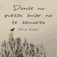 No te demores. #Frida