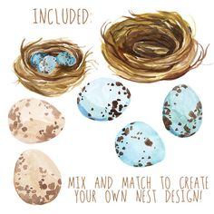 This is a listing for hand painted watercolor clipart of Spring Birds Nests. My clip art is ideal for graphic design, digital scrapbooking