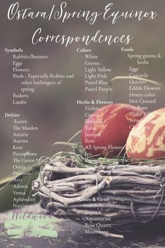 Correspondences for Ostara, the Spring Equinox. Use these Ostara correspondences in your next Ostara ritual or Ostara spellwork. Save the Spring Equinox Correspondences for your Book of Shadows! Beltane, Wiccan Sabbats, Wicca Witchcraft, Wiccan Rituals, Magick Book, Eclectic Witch, Vernal Equinox, Tarot Spreads, Kitchen Witch