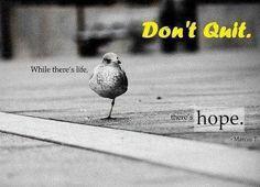Dont Quit  Please Motivate Your self