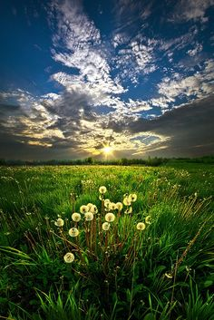 Change of Season by Phil Koch on 500px